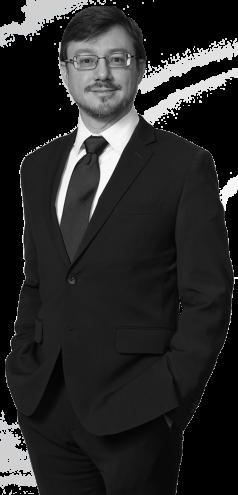Photo of Reston Patent Attorney David Stein