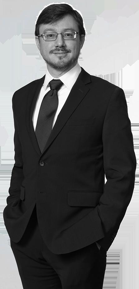 David J. Stein